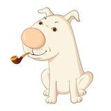Perro con el tubo Imagen de archivo libre de regalías