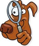 Perro con el vidrio de mirada Foto de archivo
