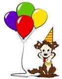 Perro con los globos y el sombrero coloreados del partido foto de archivo libre de regalías