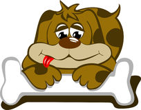 Perro con su hueso Imagen de archivo libre de regalías