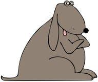 Perro con sus brazos cruzados Imagen de archivo