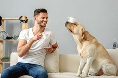 Perro con una taza en su sentada de la nariz Imágenes de archivo libres de regalías