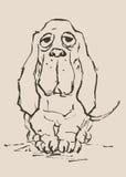 Perro de afloramiento stock de ilustración