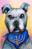 Perro de Jánuca con la bufanda del menorah Fotos de archivo libres de regalías