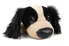 Perro de juguete de la felpa Imágenes de archivo libres de regalías