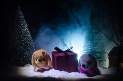 Perro de juguete - un símbolo del Año Nuevo debajo de la nieve contra la perspectiva del abeto ramifica El perro de juguete como  Fotos de archivo