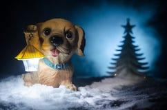 Perro de juguete - un símbolo del Año Nuevo debajo de la nieve contra la perspectiva del abeto ramifica El perro de juguete como  Fotografía de archivo