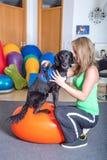 Perro de la fisioterapia Fotos de archivo