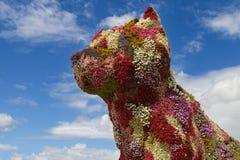 Perro de la flor en Bilbao Foto de archivo