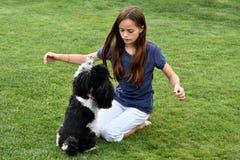Perro de la muchacha y de caniche Fotos de archivo