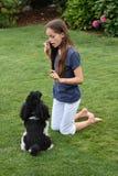 Perro de la muchacha y de caniche Imagenes de archivo