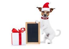Perro de la Navidad como Papá Noel Fotos de archivo