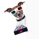 perro de la película de los vidrios 3d Foto de archivo