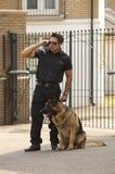 Perro de la seguridad Fotografía de archivo