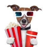 perro de las palomitas de la película de los vidrios 3d Foto de archivo libre de regalías