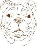 Perro de los puntos Imagen de archivo