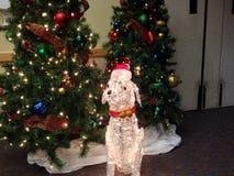 Perro de Papá Noel Fotos de archivo