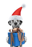 Perro de Papá Noel con el regalo del Año Nuevo Foto de archivo