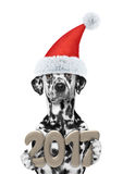 Perro de Papá Noel con 2017 números del Año Nuevo Imagenes de archivo