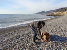 Perro de pastor adolescente del entrenamiento de la muchacha en la playa Imagen de archivo libre de regalías