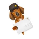 Perro de salchicha del perro basset de la entrega de los posts fotos de archivo libres de regalías