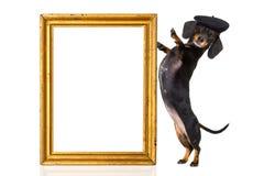 Perro de salchicha francés fotos de archivo libres de regalías