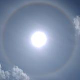 Perro de Sun Fotos de archivo libres de regalías