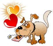 Perro del amor Fotografía de archivo