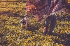 Perro del barro amasado de la mujer que camina en el perrito feliz del bosque de la primavera que corre entre las flores amarilla imágenes de archivo libres de regalías