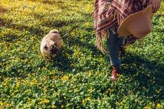 Perro del barro amasado de la mujer que camina en el perrito feliz del bosque de la primavera que corre entre las flores amarilla fotos de archivo libres de regalías