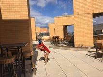perro del boxeador en suéter rojo Imagen de archivo libre de regalías
