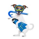 Perro del buceo con escafandra Fotografía de archivo libre de regalías