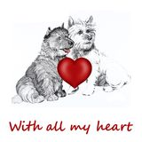 Perro del collie con el corazón de la tarjeta del día de San Valentín Imagen de archivo