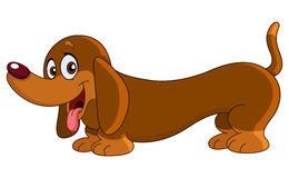Perro del Dachshund Imagen de archivo