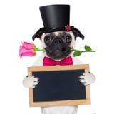 Perro del enfermo del amor de las tarjetas del día de San Valentín Foto de archivo