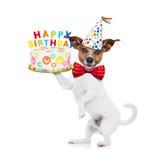 Perro del feliz cumpleaños imagenes de archivo