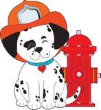 Perro del fuego de Dalmation Imagenes de archivo