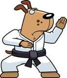 Perro del karate Fotos de archivo