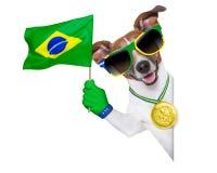 Perro del mundial del Brasil la FIFA Fotos de archivo