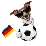 Perro del mundial del Brasil la FIFA Foto de archivo