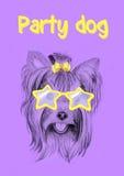 Perro del partido con los vidrios: postal, invitación Imagen de archivo