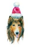 Perro del rojo de la acuarela Fotos de archivo