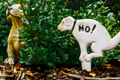 Perro desafiante Imagen de archivo libre de regalías