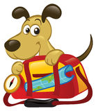 Perro detrás de un bolso grande del recorrido Imagenes de archivo