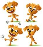 Perro divertido amarillo determinado que juega el balón de fútbol Fotografía de archivo libre de regalías
