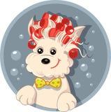 Perro divertido con la historieta del vector del salón del animal doméstico de los rodillos del pelo Imagen de archivo libre de regalías