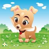 Perro divertido del bebé en el prado Imagen de archivo