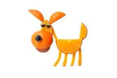 Perro divertido hecho de naranja imagen de archivo
