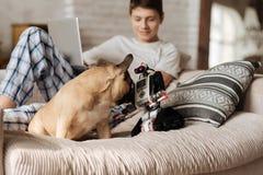 Perro divertido que juega con el robot Fotografía de archivo libre de regalías