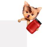 Perro divertido que sostiene el envase con la nutrición del deporte Imagenes de archivo